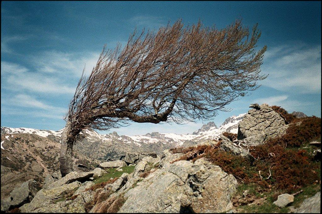 Col de Saint-Pierre, Haute-Corse, France